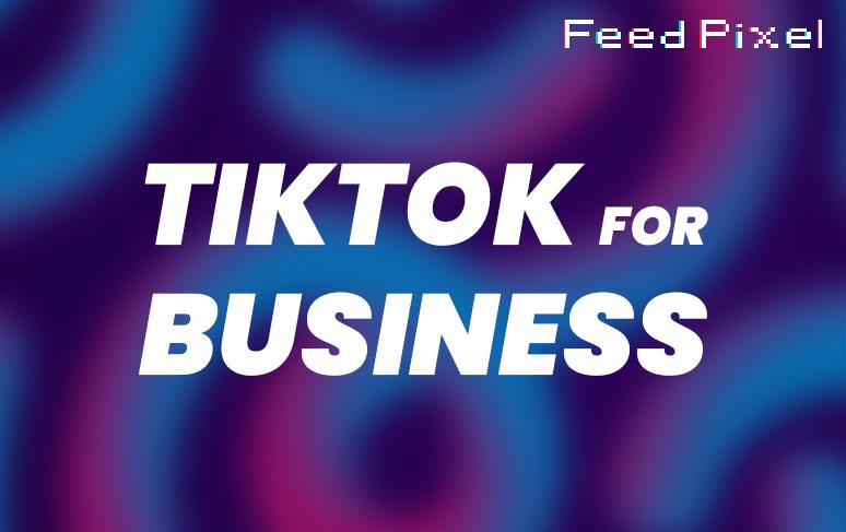 TikTok For Business guide